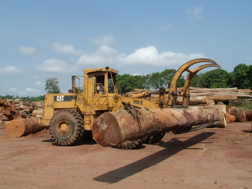 Harvesting of tropical timber in Ghana