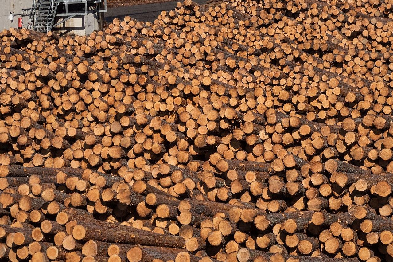 UK hardwood market recovering.